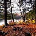 Campsite On Cary Lake by David Patterson