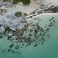 Cancun Shoreline