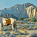Canyon Country Paints by Paul Krapf