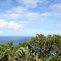 Caribbean Cruise - St Thomas - 1212215 by DC Photographer