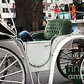 Carriage Ride in Central Park by John Rizzuto