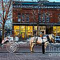 Carriage Ride by Baywest Imaging