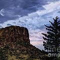 Castle Rock by Juli Scalzi