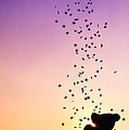 Catch A Falling Star by Tim Gainey