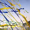 Celebration by Jon Berry