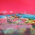 Celebration by Lisa Knechtel