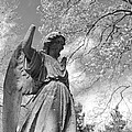 cemetery angel Print by Jennifer Lyon