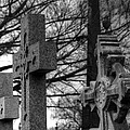 Cemetery Crosses by Jennifer Ancker