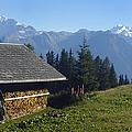 Chalet in the swiss alps Bettmeralp Switzerland