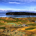 Chambers Bay Golf Course by David Patterson