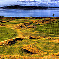 Chambers Bay Lone Tree by David Patterson