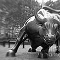 Charging Bull 3 Print by Tony Cordoza