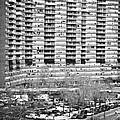 Chatham Green 1990 by John Rizzuto