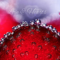 Cherry Fizz Hearts With Love by Tracie Kaska