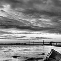 Chesapeake Mornings Bw by JC Findley