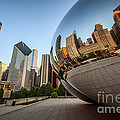 Chicago Bean Cloud Gate Sculpture Reflection by Paul Velgos