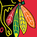 Chicago Blackhawks by Tony Rubino