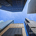 Chicago Buildings Upward View with Willis-Sears Tower Print by Paul Velgos