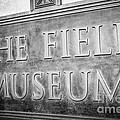 Chicago Field Museum Sign In Black And White by Paul Velgos