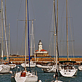 Chicago Harbor Lighthouse Illinois by Christine Till