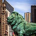 Chicago Lion Statues At The Art Institute by Paul Velgos