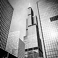 Chicago Willis-Sears Tower in Black and White Print by Paul Velgos