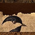 Chickadee by Carol Leigh