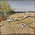 Chickadees And A Row Of Birch Trees by Carolyn Doe
