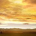Chicken Farm Sunset 2 by James BO  Insogna