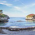 China Cove Point Lobos by Brad Scott