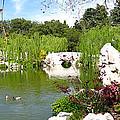Chinese Gardens by Bedros Awak