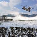 Chinook In Snow Dust by Nop Briex