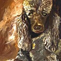 Chocolate Poodle by Susan A Becker