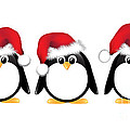 Christmas Penguins Isolated by Jane Rix