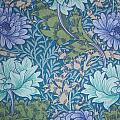 Chrysanthemums In Blue by William Morris