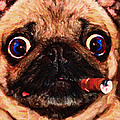 Cigar Puffing Pug - Painterly Print by Wingsdomain Art and Photography