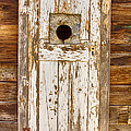 Classic Rustic Rural Worn Old Barn Door by James BO  Insogna