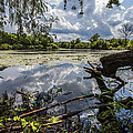 Clouds On The Water by CJ Schmit