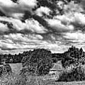 Cloudy Countryside Collage - Black And White by Kaye Menner