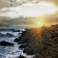 Coastal Sunrise by Tom York Images
