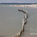 Coastal Vision by Hugh Reynolds