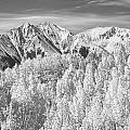 Colorado Rocky Mountain Autumn Beauty Bw by James BO  Insogna