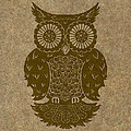Colored Owl 3 Of 4  by Kyle Wood