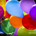 Colorful Balloons by Elena Elisseeva