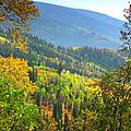 Colorful Colorado by Brian Harig