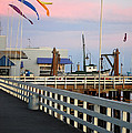 Colorful Flags And Wharf by Debra Thompson