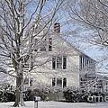 Connecticut Winter by Michelle Welles