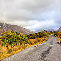 Connemara Roads - Irish Landscape by Mark Tisdale