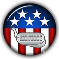 Cool Air Force Insignia by Pamela Johnson