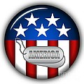Cool America Insignia Print by Pamela Johnson